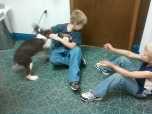 Uno playing with Tyler and Gavin.  This was the clearest picture we could get since he was so excited.