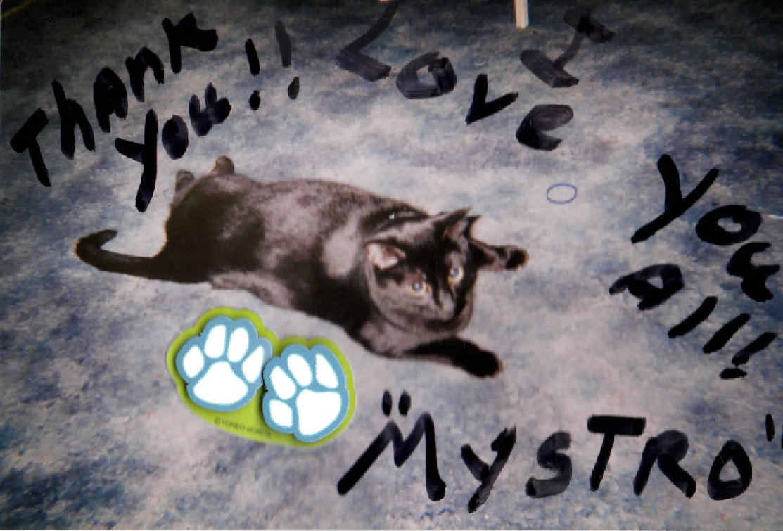 Mystro sent a little Thank You after getting some much needed care from Dr. C.