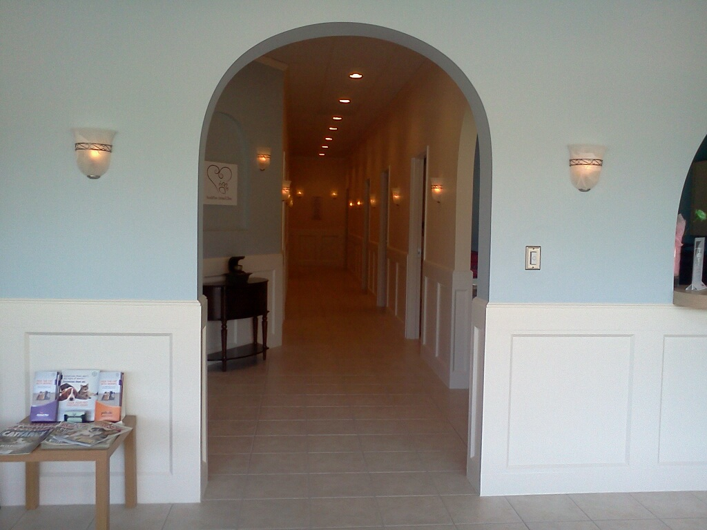 When you enter SouthPaw Animal Clinic, you will immediately notice the welcoming arched doorway and soothing colors.