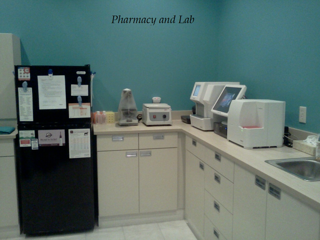 Welcome to our In-House Laboratory and Pharmacy, where our Veterinary Staff will perform diagnostics to help your pet feel their very best.