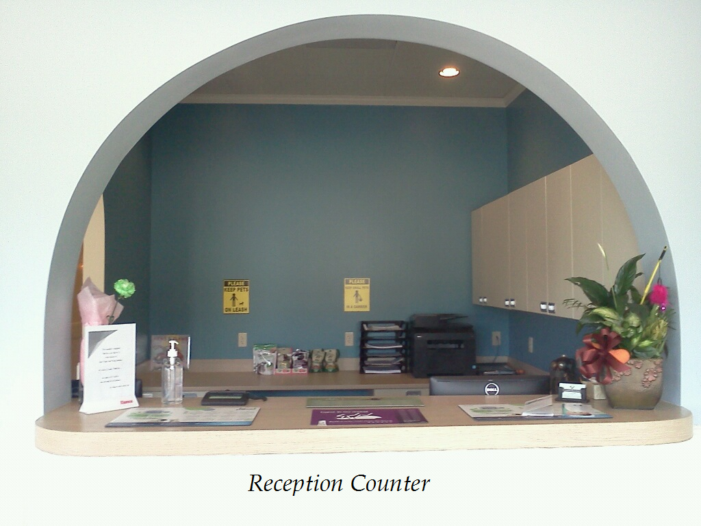 When you visit SouthPaw Animal Clinic, you will want to check in and out at our reception counter.