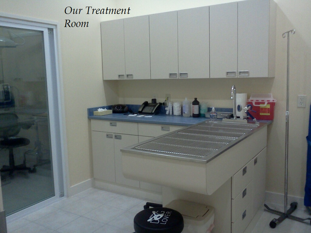 Dental cleanings, wound care, short medical procedures and surgical preparation are done in our Treatment Area.