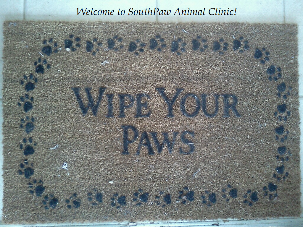 "Welcome to SouthPaw Animal Clinic.  Don't forget to ""Wipe Your Paws""."